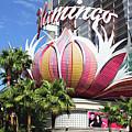 Las Vegas Flamingo Hotel Lotus Blossom by Linda Phelps
