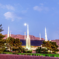 Las Vegas Temple Moon by La Rae  Roberts