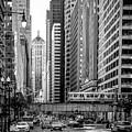 Lasalle Street by Tony HUTSON