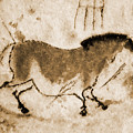 Lascaux Prehistoric Horse Burned Leather Version by Weston Westmoreland