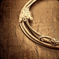 Lasso On Leather by American West Legend By Olivier Le Queinec
