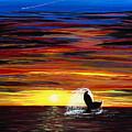 Last Days Dive by Luke Walker