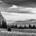 Last Light Of Day In Bw by Frank Wilson