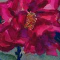Last Rose Of Summer by Helen Musser