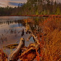 Late Afternoon Sunset Over Hawk Lake by Dale Kauzlaric