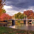 Late Autumn Custom by Joann Vitali