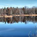 Late Autumn Reflections by Deborah Benoit