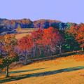 Late Fall Biltmore Estates by Garland Johnson