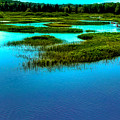 Late May On The Moose River by David Patterson