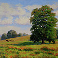 Late Summer Pastoral by Keith Burgess