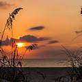 Late Sunrise 3 by Zina Stromberg
