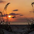 Late Sunrise by Zina Stromberg