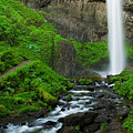 Latourell Falls Oregon by Renee Hong