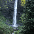 Latourelle Falls-columbia River Gorge by Sandra Bronstein