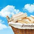 Laundry Basket  Against A Blue Sky by Sandra Cunningham