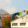 Laundry Day by Gerri Ricci