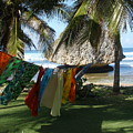 Laundry Day In Barbados by Jeanie Watson