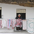 Laundry Day by Suzanne Oesterling