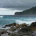 Laupahoehoe Point by Pamela Walton