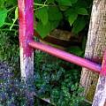 Laura's Ladder by Jen White