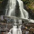 Laurel Falls by Darlene Neisess