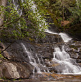 Laurel Falls Four by Bob Phillips