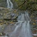 Laurel Falls by Michael Peychich
