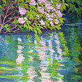 Laurel Reflection by Keith Burgess