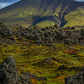 Lava Field And Mountain - Iceland by Stuart Litoff