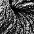 Lava Patterns - Bw by Carl Shaneff - Printscapes
