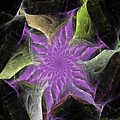 Lavendar Fractal Flower by David Lane