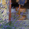 Lavender Blooming Near Stairway by Anne Keiser