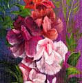 Lavender Blush by Erich Grant