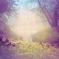 Lavender Dreams by Debra and Dave Vanderlaan