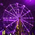 Lavender Ferris Wheel by Teresa Hayes
