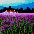 Lavender Field - County Wicklow - Ireland by John  Nolan