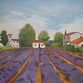 Lavender Field by Betty-Anne McDonald