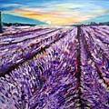 Lavender Fields by Lynne McQueen