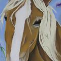 Lavender Horse by Michelle Hayden-Marsan