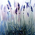Lavender by Lisa Schorr