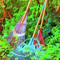 Lawn Tools by Tom Singleton