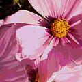 Layers Of Pink Cosmos - Digital Art by Carol Groenen