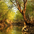 Lazy Afternoon On The Creek 2 by Greg Matchick