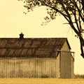 Lazy Days Barn  by Cathy Beharriell