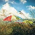 Lazy Days Of Summer by Tammy Wetzel