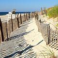 Lbi Dunes by John Rizzuto