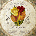 Le Jardin Tulipes by Mindy Sommers