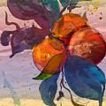Le Temps Des Oranges by Miki De Goodaboom
