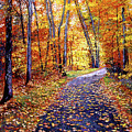 Leaf Covered Road by David Lloyd Glover