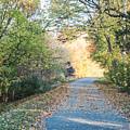 Leaf-strewn Path by Thomas Marchessault